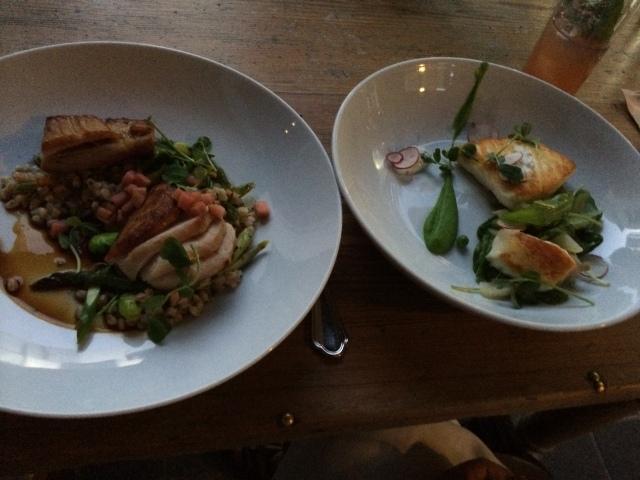 Pork Loin & Halibut