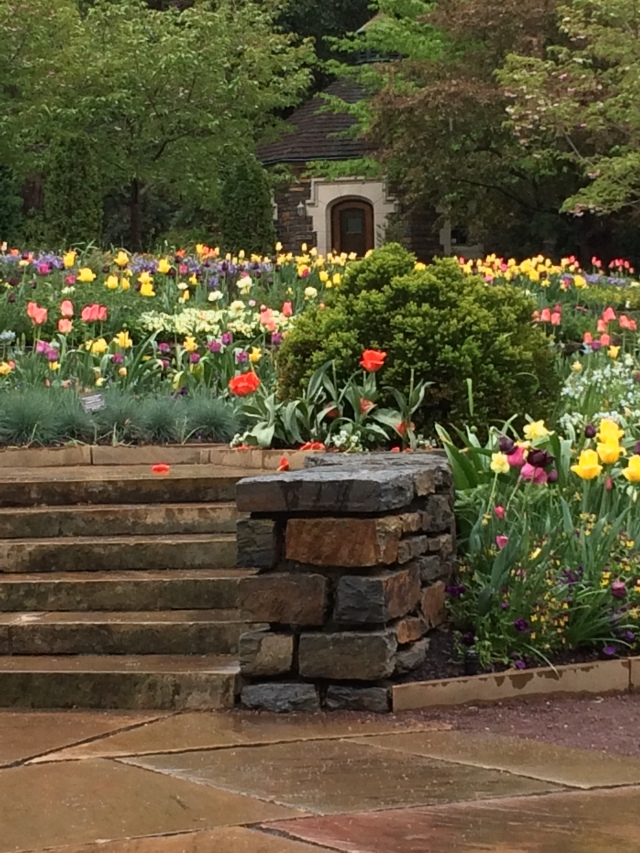 More Duke Gardens