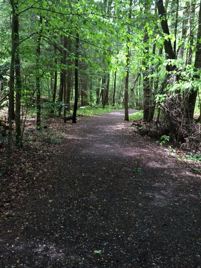 Gatlinburg Trail hike