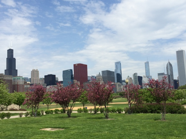 Skyline from Grant Park