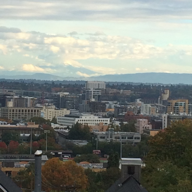 View from Mike & Ellen's deck overlooking downtown Portland (don't miss Mt St Helen's)