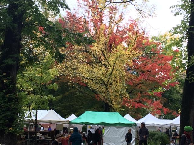 Just shy of peak fall foliage in Portland