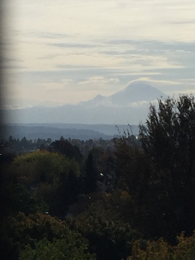 View of Mount Ranier 50 miles south of Seattle