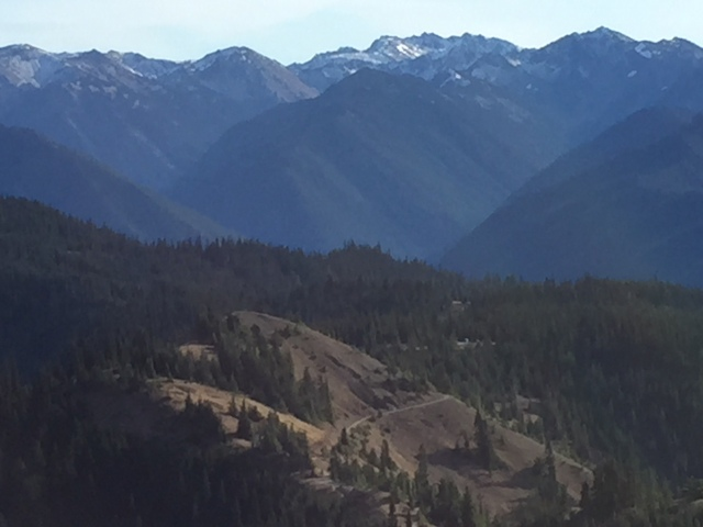View of Mt. Olympus from Hurricane Ridge.  You can see our trail in the Foreground