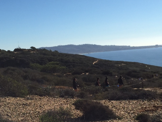 5 mile hike in Torry Pines State Park