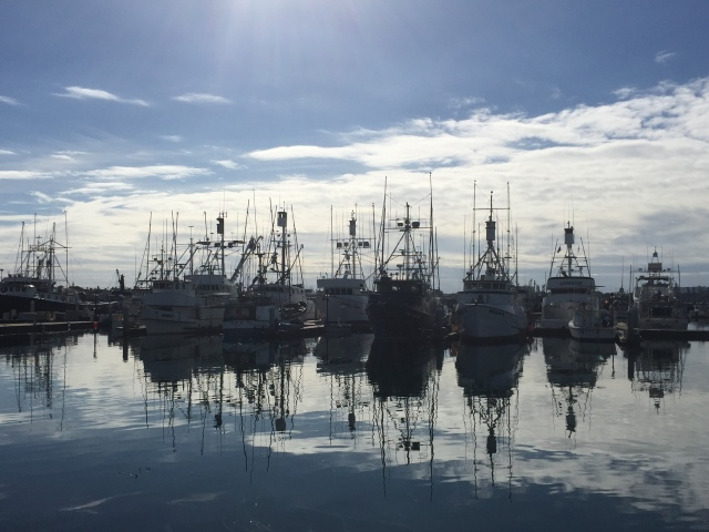 The remains of San Diego's once enormous Tuna Fleet