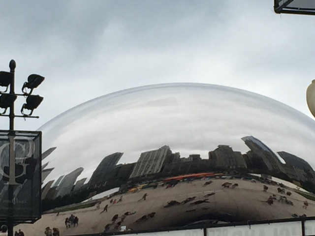 One obligatory Bean Picture.