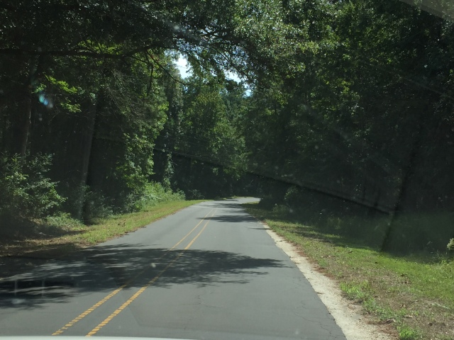 """The road to Sputhport reminded us of the roads seen on """"The Walking Dead"""""""