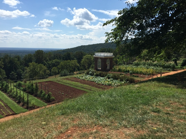 Monticello gardens. Still producing!