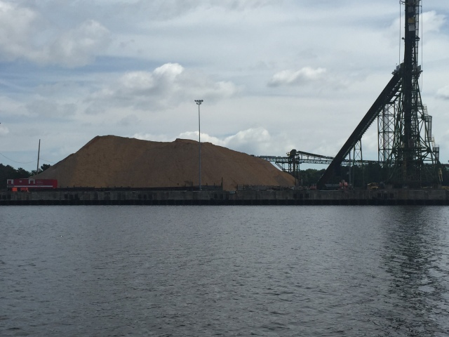 A big pile  of pine wood chips