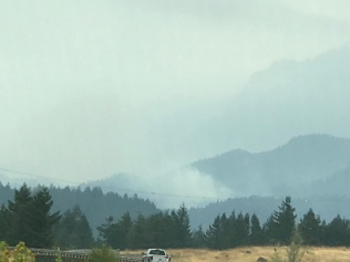 More Wildfires
